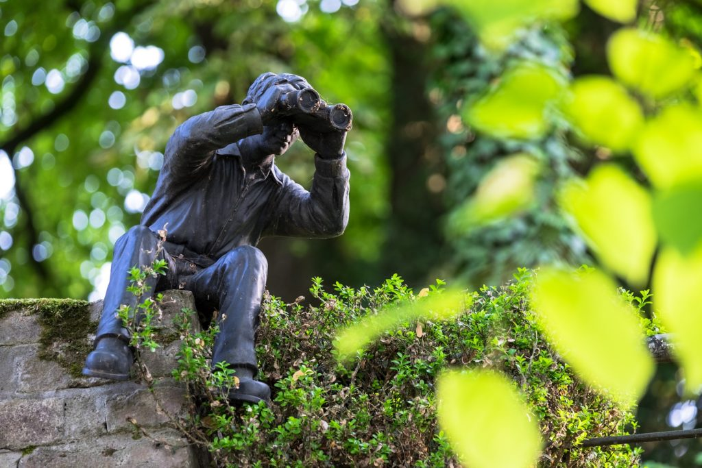 statue med kikkert